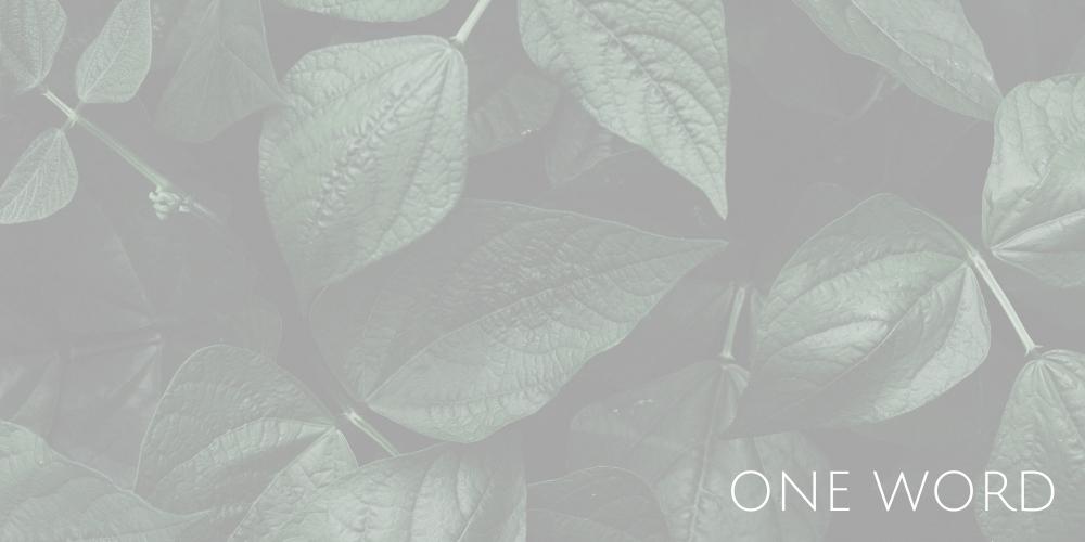 会社イメージ画像